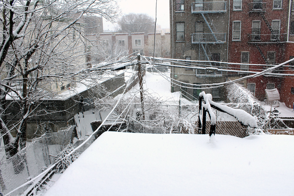 Snowy Day In Brooklyn - Snow Photos Brooklyn - Hey Mishka - Michelle Christina Larsen - 5