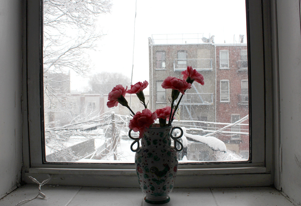 Snowy Day In Brooklyn - Snow Photos Brooklyn - Hey Mishka - Michelle Christina Larsen - 7