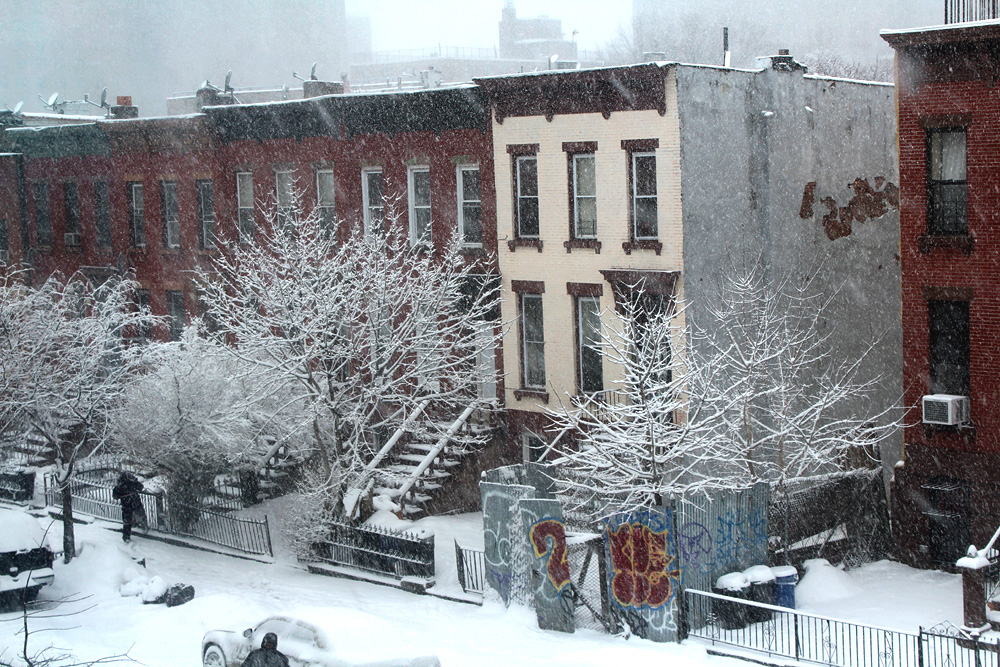 Snowy Day In Brooklyn - Snow Photos Brooklyn - Hey Mishka - Michelle Christina Larsen - 3