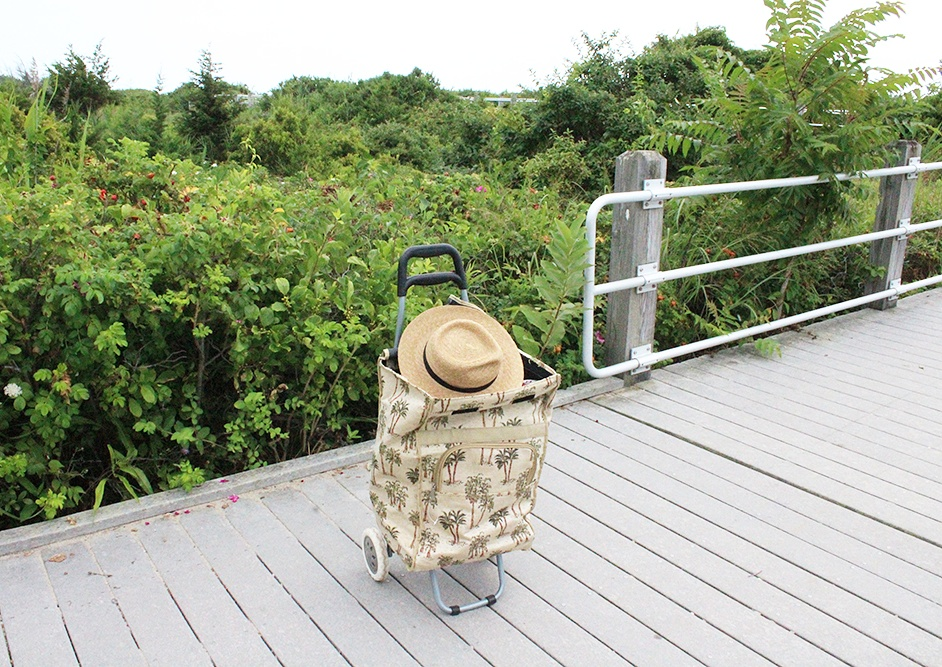 Travel Diary - An Overcast Week at Hammonasset Beach - Hey Mishka